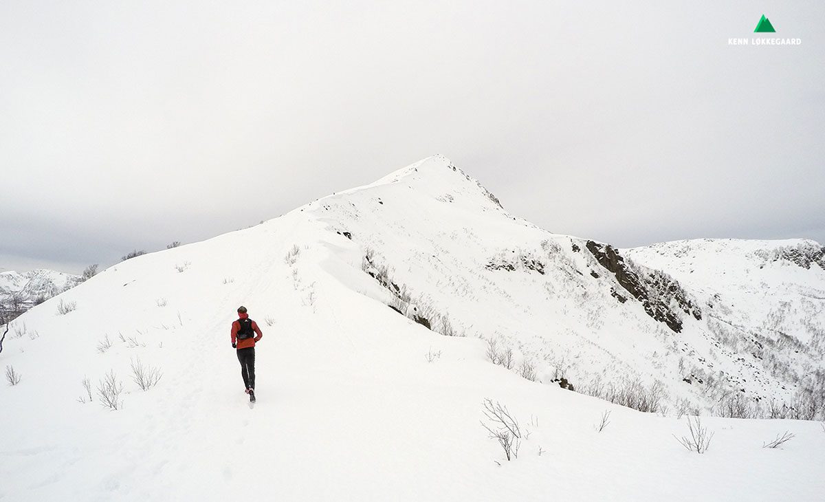 Kenn på vej op ad Hallartinden 530 moh.