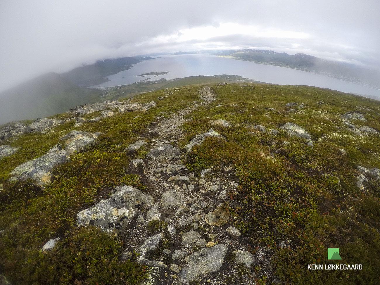 Blåheia-trailløb-tåge-sti-ned
