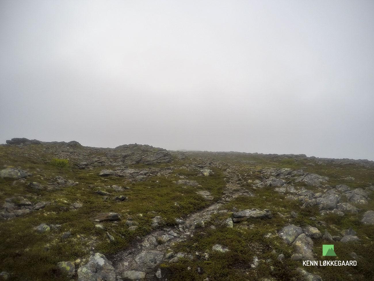 Blåheia-trailløb-tåge-sti-op